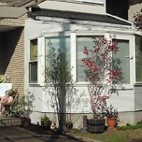 施工例39 【栃木】 庭を楽しむ