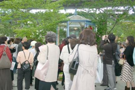 2009年、西武ドームで開催されました「国際バラとガーデニングショー」にてお客様の注目を浴びる。