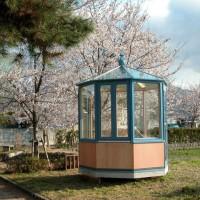 桜が満開の公園に独立型の悠Uサンルームを展示